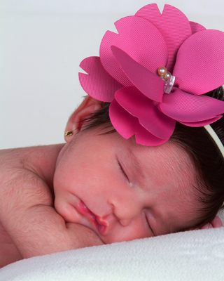 MSC Noticias - Bebé Agencias Com y Pub Alego Com Negocios Publicidad Salud