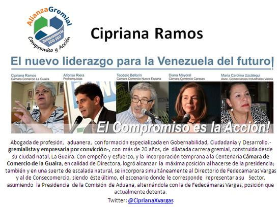 MSC Noticias - PERFIL_CIPRIANA Agencias Com y Pub Negocios Publicidad