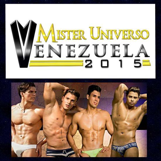 MSC Noticias - cuadro-2014 Agencias Com y Pub Estética y Belleza Farándula Org Miss Venezuela Publicidad